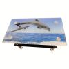 Masa cafea X51 Delfin, negru, Armonia casei tale (2)