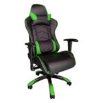 Scaun Gaming PowerRace B22 negru/verde