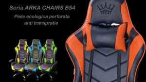 seria Arka Chairs B54